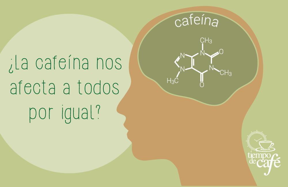 ¿La cafeína nos afecta a todos por igual?