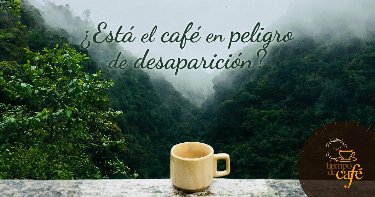 ¿Está el café en peligro de desaparición?