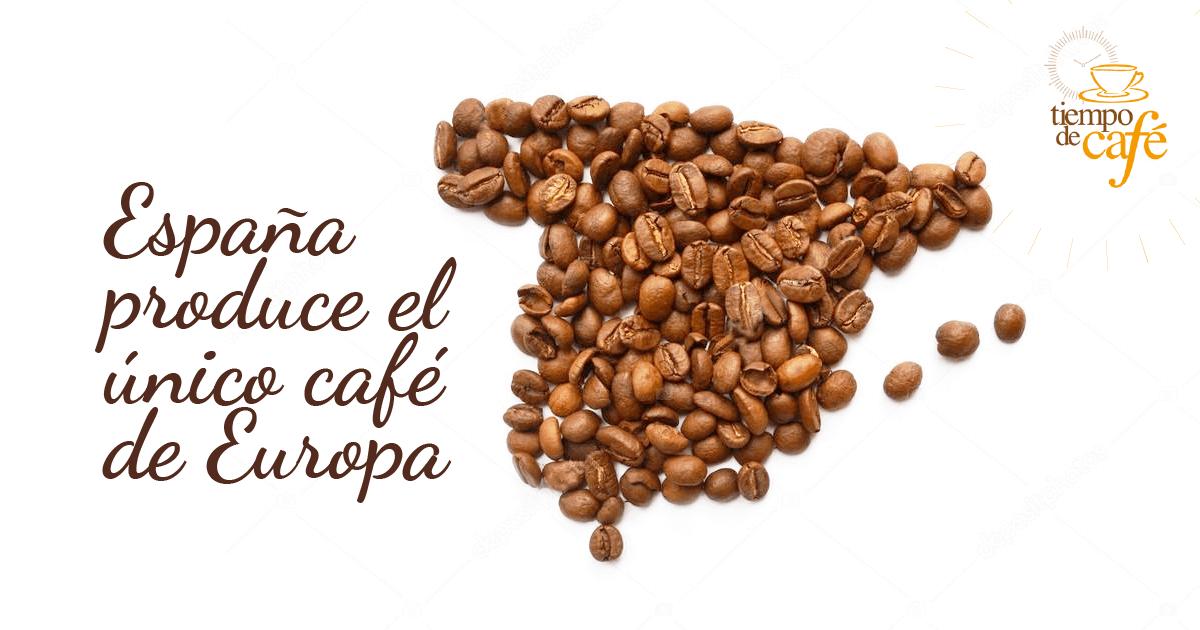 España produce el único café de Europa