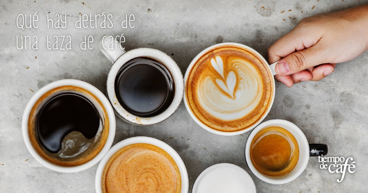 Qué hay detrás de una taza de café