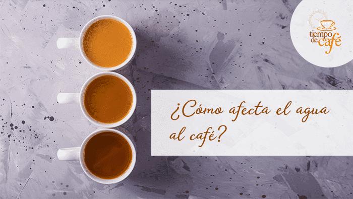 ¿Cómo afecta el agua al café?